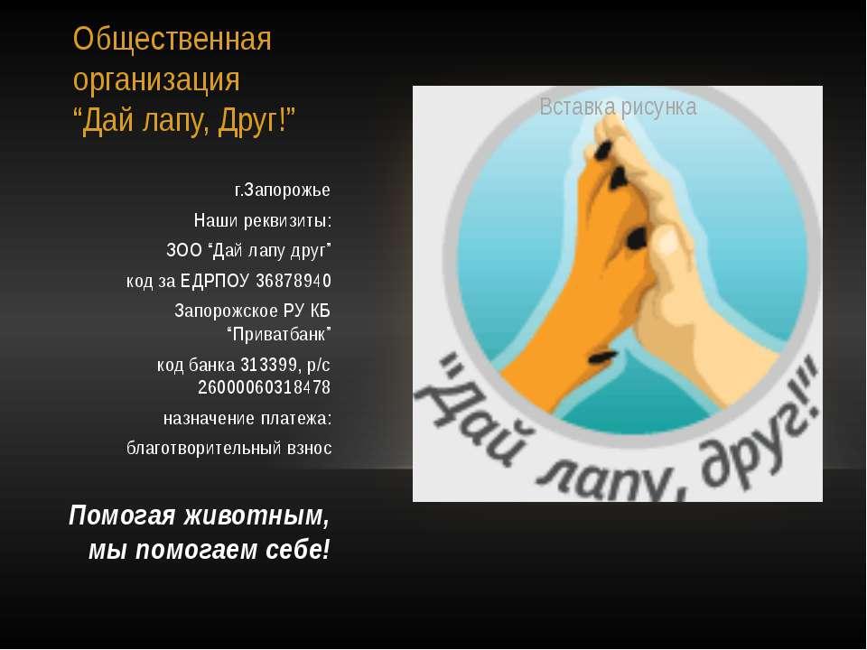 """Общественная организация """"Дай лапу, Друг!"""" г.Запорожье Наши реквизиты: ЗОО """"Д..."""