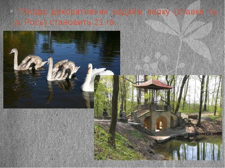 Площа декоративних водойм парку (ставки та р. Рось) становить 21 га.