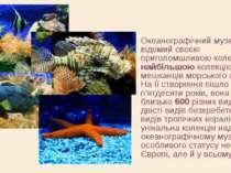 Океанографічний музей відомий своєю приголомшливою колекцією, найбільшою коле...