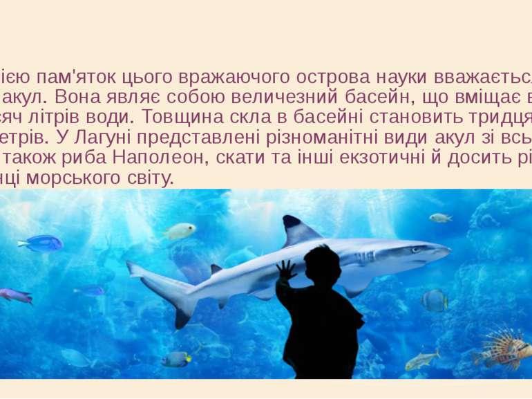 Ще однією пам'яток цього вражаючого острова науки вважається Лагуна акул. Вон...