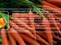 Помаранчевий У США і Європі помаранчева упаковка підкреслює дешевизну товару....