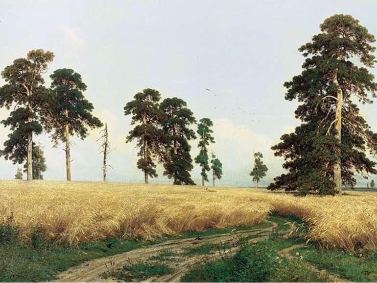 «Жито» 1878