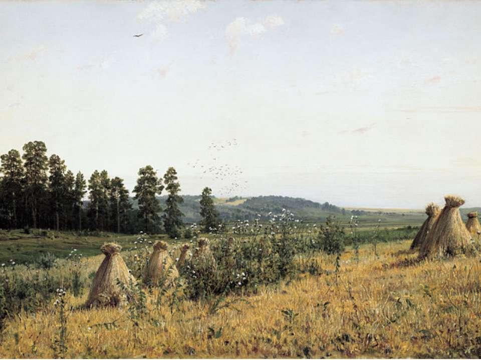 Полісся 1884