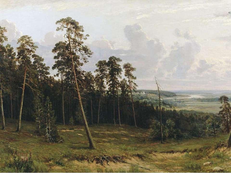 «Узлісся лісу» 1882