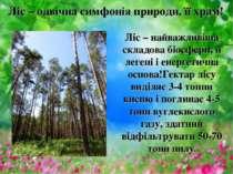 Ліс – одвічна симфонія природи, її храм! Ліс – найважливіша складова біосфери...