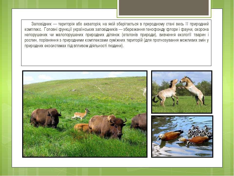 Заповíдник — територія або акваторія, на якій зберігається в природному стані...