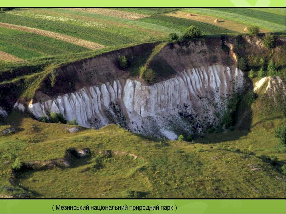 ( Мезинський національний природний парк )