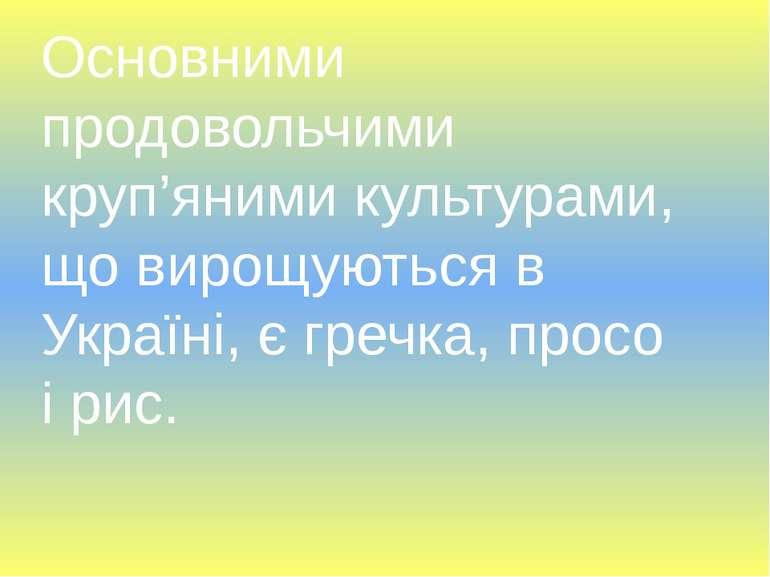 Основними продовольчими круп'яними культурами, що вирощуються в Україні, є гр...