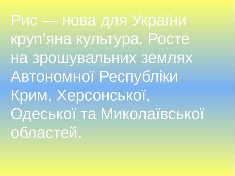 Рис — нова для України круп'яна культура. Росте на зрошувальних землях Автоно...