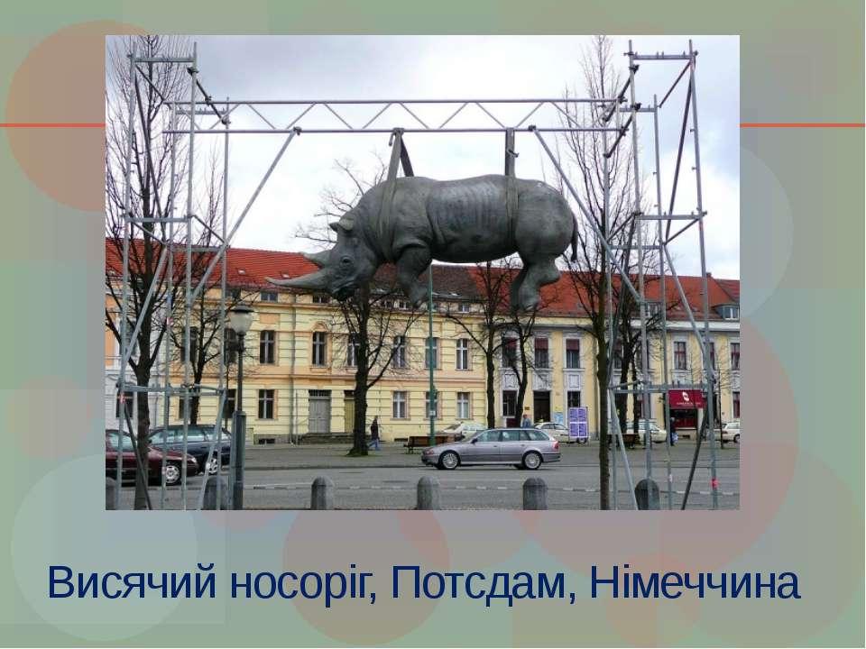 Висячий носоріг, Потсдам, Німеччина