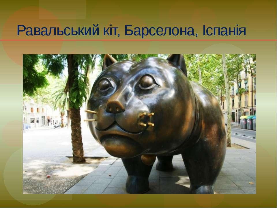 Равальський кіт, Барселона, Іспанія