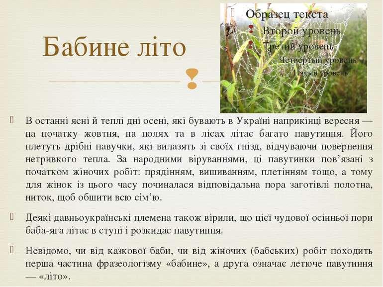 Бабине літо В останні ясні й теплі дні осені, які бувають в Україні наприкінц...