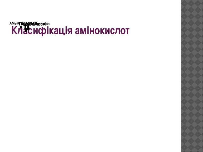 Класифікація амінокислот