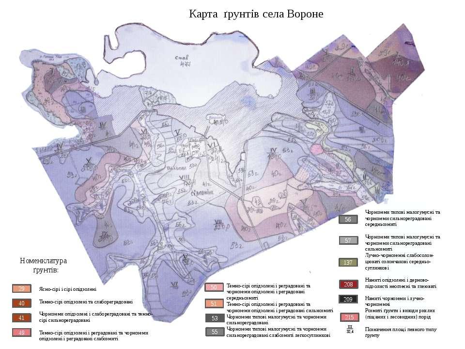 Карта ґрунтів села Вороне 29 40 41 49 Ясно-сірі і сірі опідзолені Темно-сірі ...