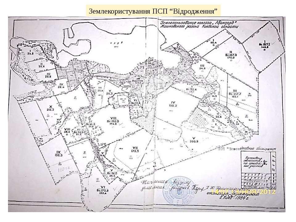 """Землекористування ПСП """"Відродження"""""""