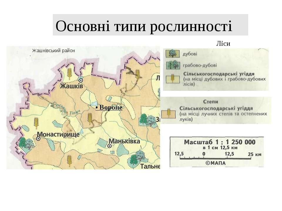 \ Ліси Основні типи рослинності • Вороне Жашківський район