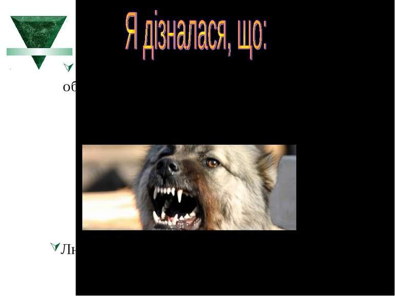 Зуб – орган, який служить для первинної обробки їжі. У тварин також використо...