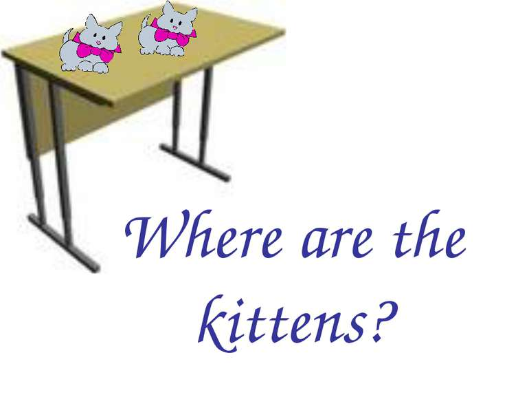 Where are the kittens?