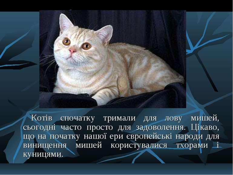 Котів спочатку тримали для лову мишей, сьогодні часто просто для задоволення....