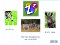 Z Z is for zebra. z is for zoo. How many zebras can you see in this slide?