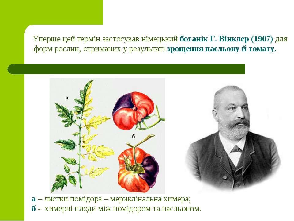 Уперше цей термін застосував німецький ботанік Г. Вінклер (1907)для форм рос...