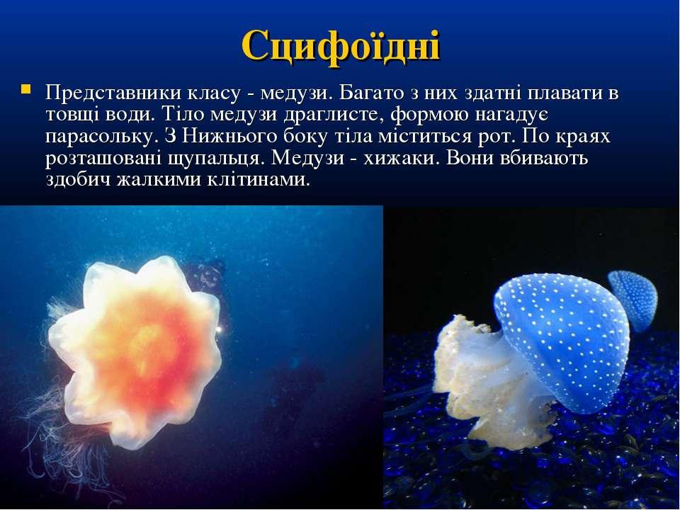 Сцифоїдні Представники класу - медузи. Багато з них здатні плавати в товщі во...