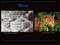 Види: Чорно-біла фотографія Кольорова фотографія