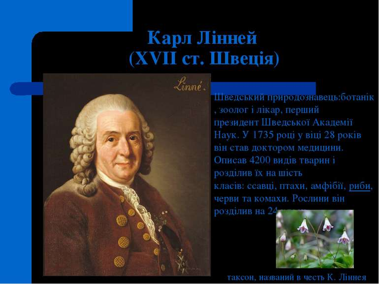 Карл Лінней (XVII ст. Швеція) Шведськийприродознавець:ботанік,зоологіліка...