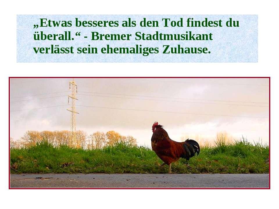 """""""Etwas besseres als den Tod findest du überall."""" - Bremer Stadtmusikant verlä..."""