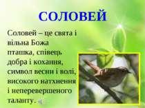 СОЛОВЕЙ Соловей – це свята і вільна Божа пташка, співець добра і кохання, сим...