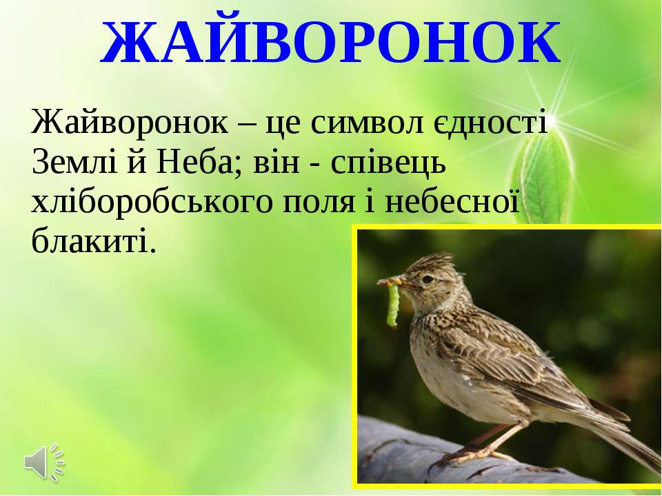 ЖАЙВОРОНОК Жайворонок – це символ єдності Землі й Неба; він - співець хліборо...