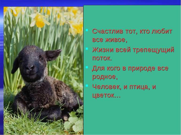 Счастлив тот, кто любит все живое, Жизни всей трепещущий поток. Для кого в пр...
