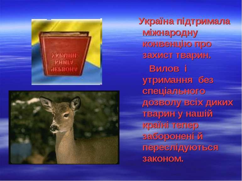 Україна підтримала міжнародну конвенцію про захист тварин. Вилов і утримання ...