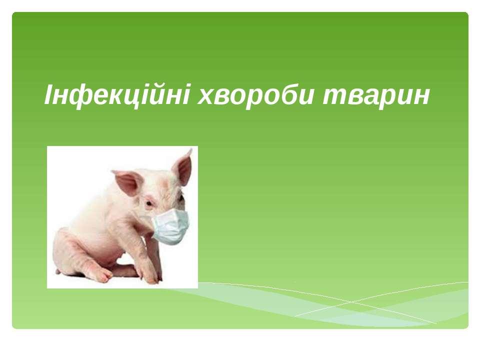 Інфекційні хвороби тварин