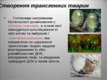 Створення трансгенних тварин Головними напрямками біотехнології розмноження є...