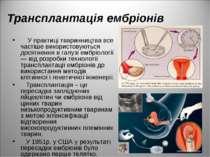 Трансплантація ембріонів У практиці тваринництва все частіше використовуються...