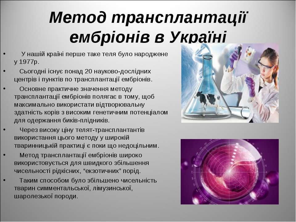 Метод трансплантації ембріонів в Україні У нашій країні перше таке теля було ...
