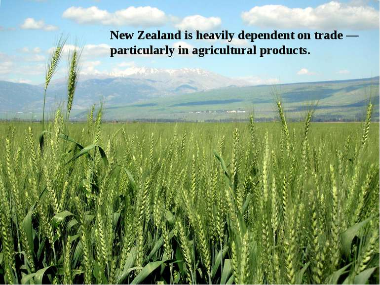 New Zealand is heavily dependent on trade — particularly in agricultural prod...