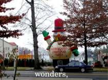 wonders,