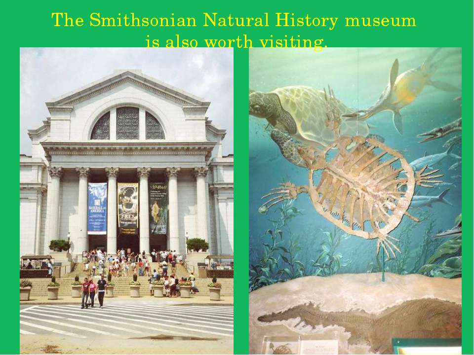 The Smithsonian Natural History museum is also worth visiting.