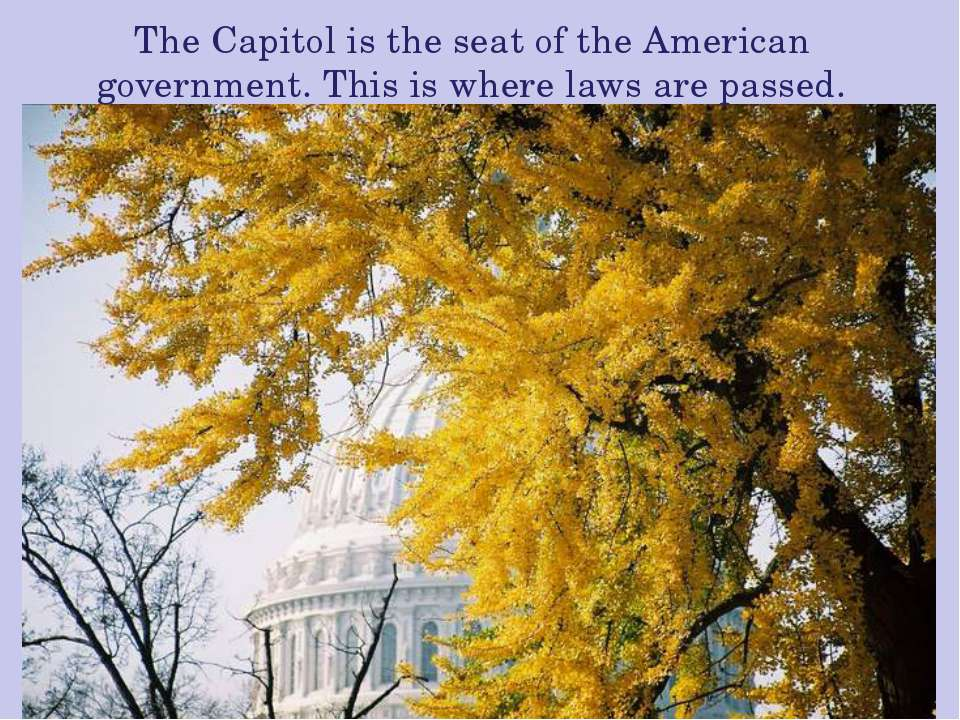 The Capitol is the seat of the American government. This is where laws are pa...
