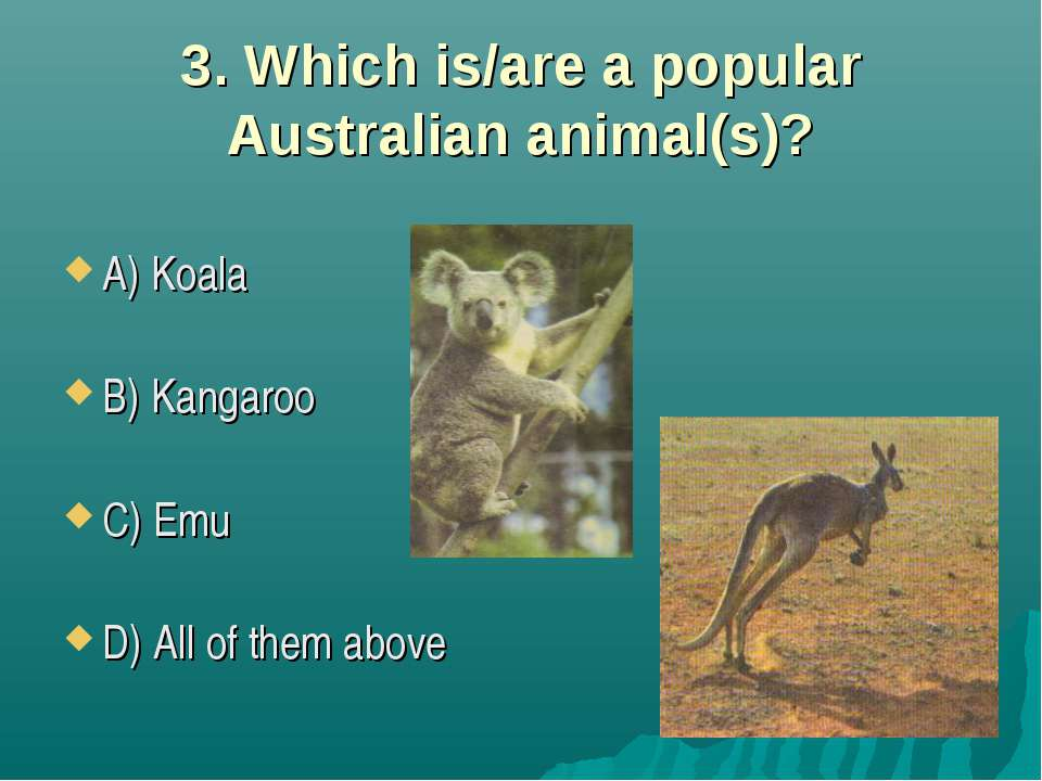 3. Which is/are a popular Australian animal(s)? A) Koala B) Kangaroo C) Emu D...