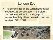London Zoo The London zoo of the London zoological society (ZSL London Zoo) —...