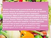 Вітаміни є біологічними каталізаторами або реагентами хімічних процесів, які ...