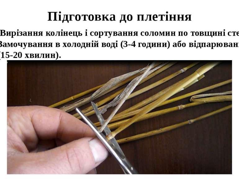 Підготовка до плетіння Вирізання колінець і сортування соломин по товщині сте...