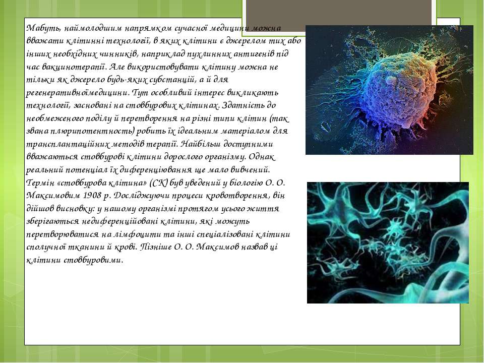Мабуть, наймолодшим напрямком сучасної медицини можна вважати клітинні технол...