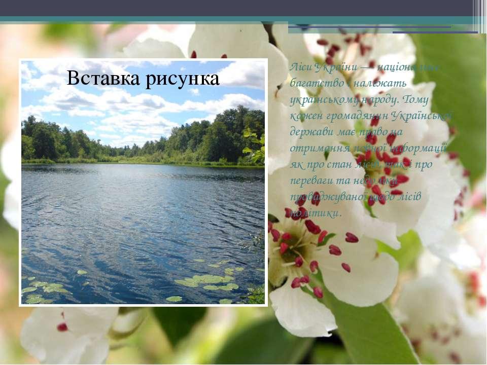 Ліси України — національне багатство і належать українському народу. Тому кож...