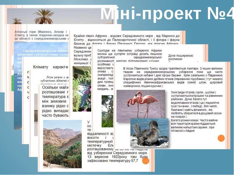Міні-проект №4