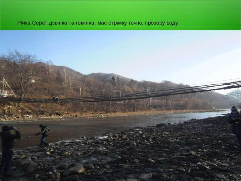 Річка Серет дзвінка та гомінка, має стрімку течію, прозору воду.
