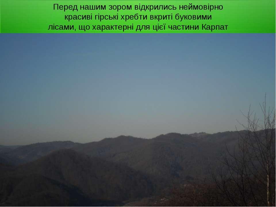 Перед нашим зором відкрились неймовірно красиві гірські хребти вкриті буковим...
